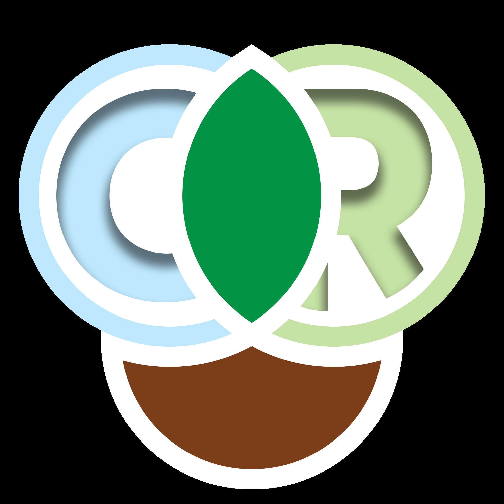 Culture Reputation Logo